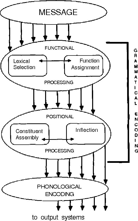 PDF] Language production : Grammatical encoding - Semantic Scholar