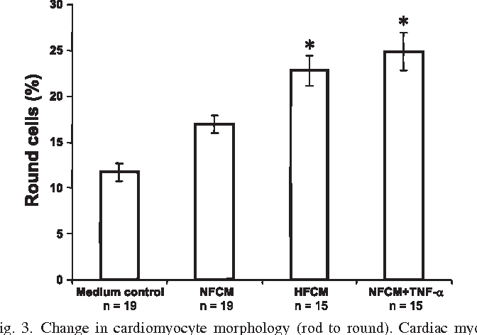 Fig. 3. Change in cardiomyocyte morphology (rod to round). Cardiac myocytes were subjected to the indicated treatments for 5 h. The percentage of round cells in each group is expressed as mean SE; n denotes the no. of dishes per group. *P 0.0001 vs. NFCM.