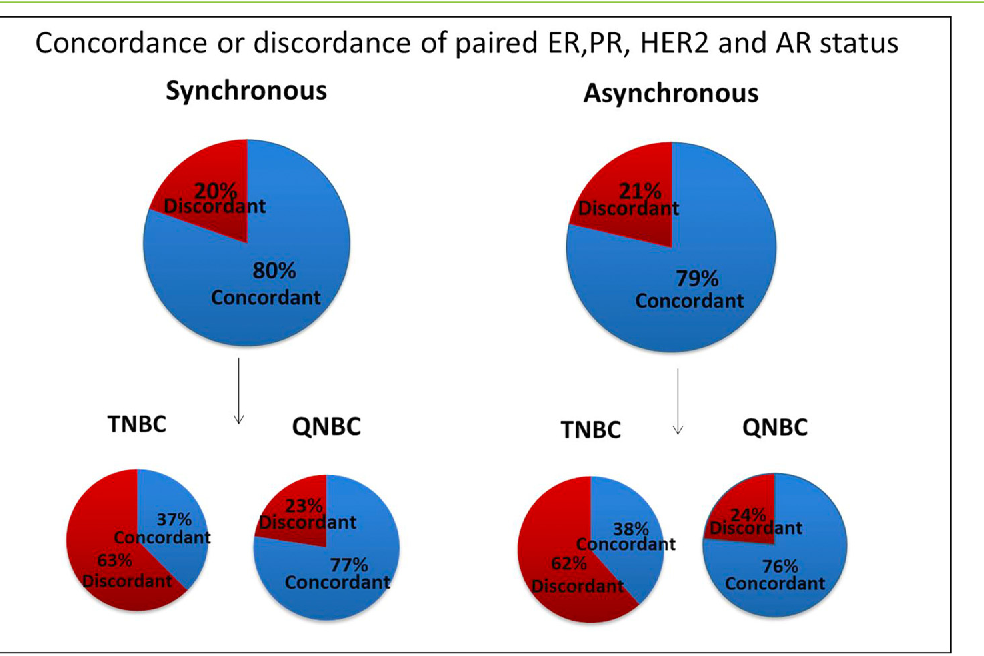 Figure 3.QNBC tumors demonstrate increased concordance in asynchronous and  synchronous biopsies. Illustration of
