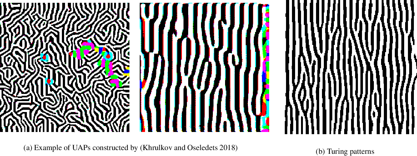 Figure 1 for Adversarial Turing Patterns from Cellular Automata