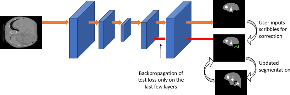 Figure 2 for Efficient and Generic Interactive Segmentation Framework to Correct Mispredictions during Clinical Evaluation of Medical Images