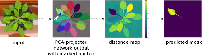 Figure 1 for Sparse Object-level Supervision for Instance Segmentation with Pixel Embeddings