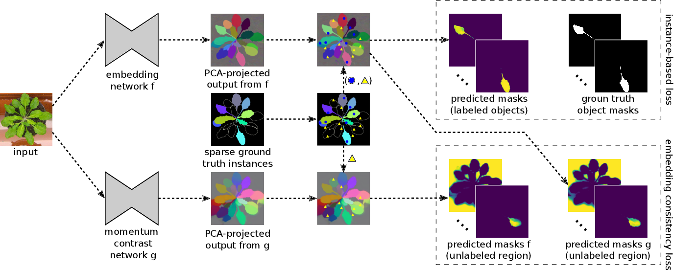 Figure 3 for Sparse Object-level Supervision for Instance Segmentation with Pixel Embeddings