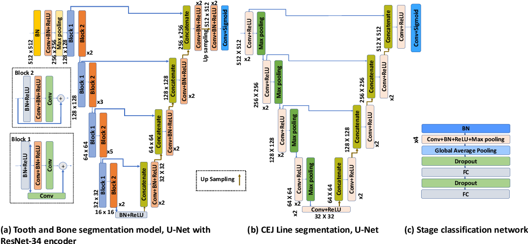 Figure 2 for An End-to-end Entangled Segmentation and Classification Convolutional Neural Network for Periodontitis Stage Grading from Periapical Radiographic Images
