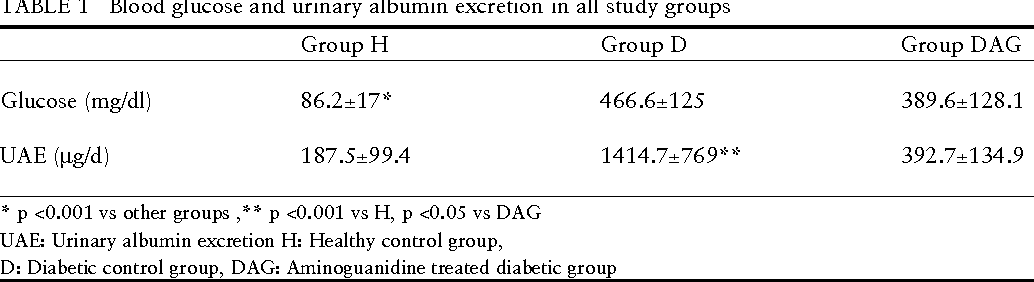 TABLE 1 Blood glucose and urinary albumin excretion in all study groups