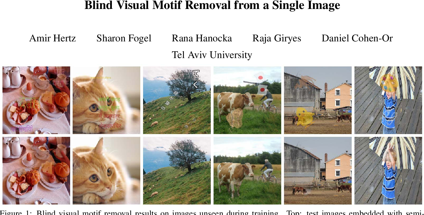Figure 1 for Blind Visual Motif Removal from a Single Image