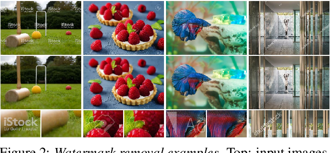 Figure 3 for Blind Visual Motif Removal from a Single Image