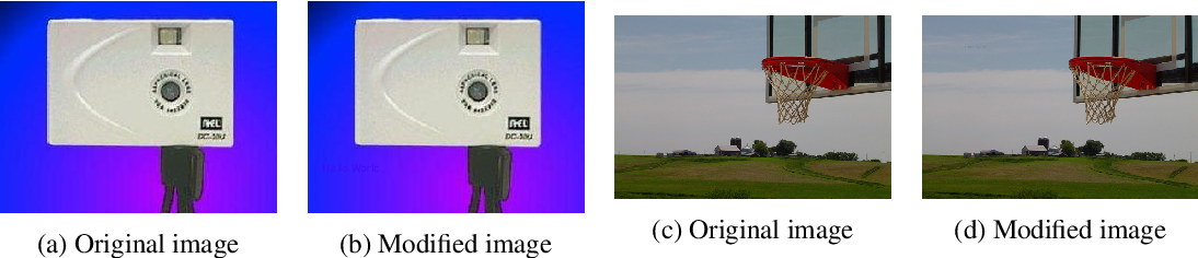 Figure 3 for Simple Transparent Adversarial Examples