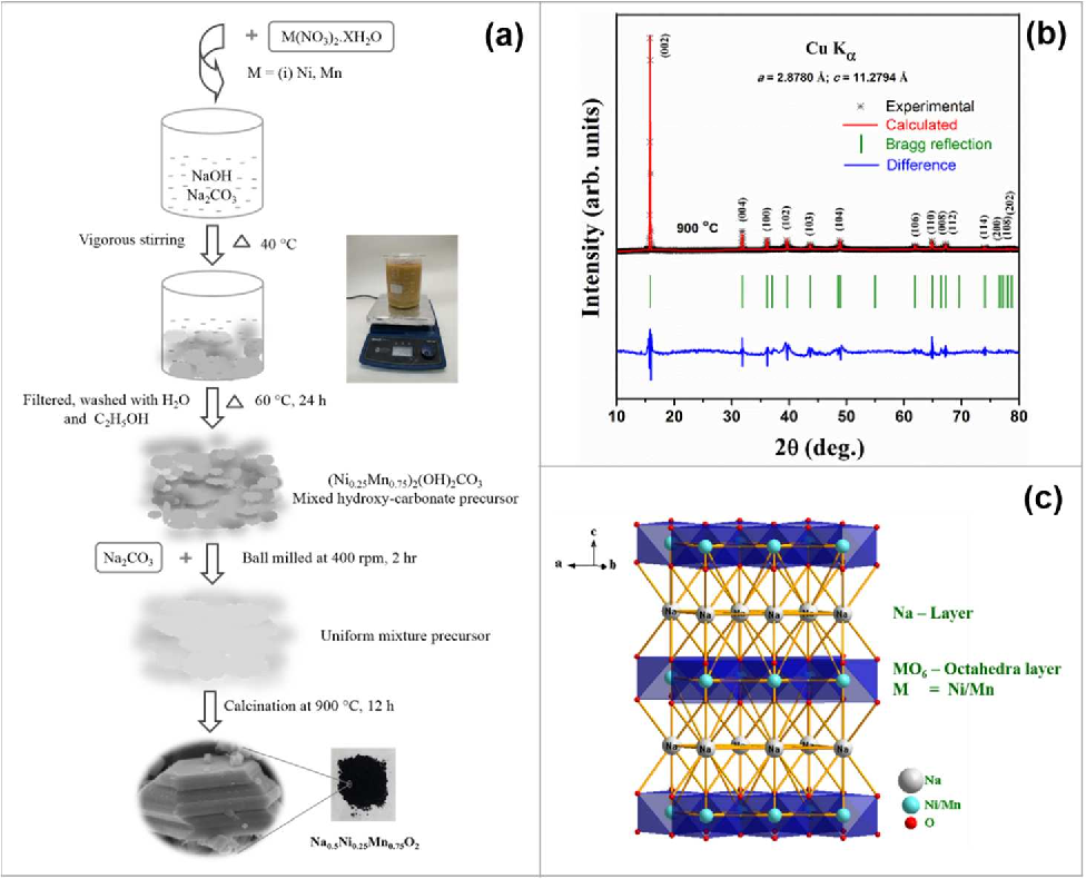 Insights Into The Dual Electrode Characteristics Of Layered Na05ni0