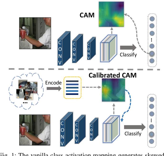 Figure 1 for Calibrating Class Activation Maps for Long-Tailed Visual Recognition