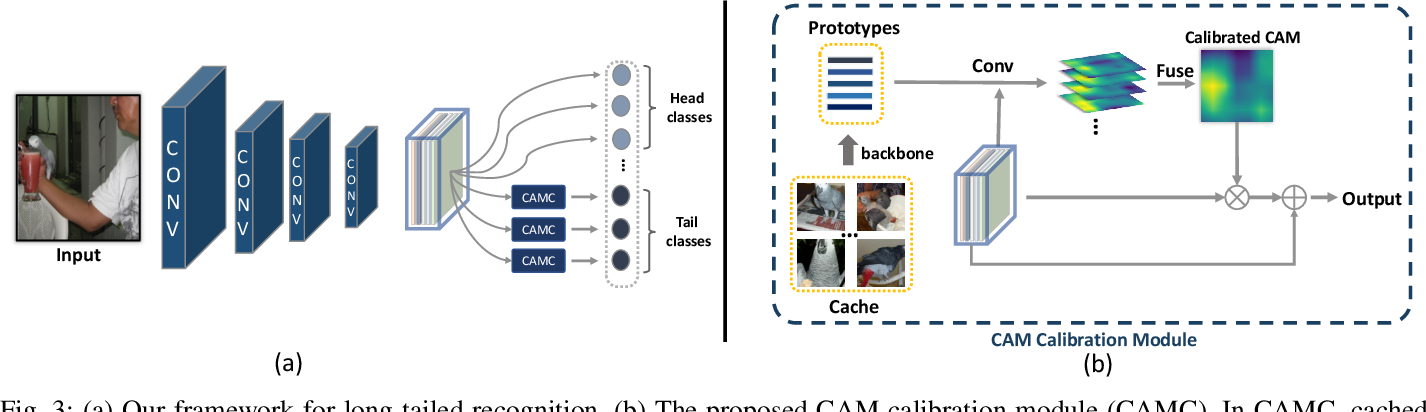 Figure 3 for Calibrating Class Activation Maps for Long-Tailed Visual Recognition