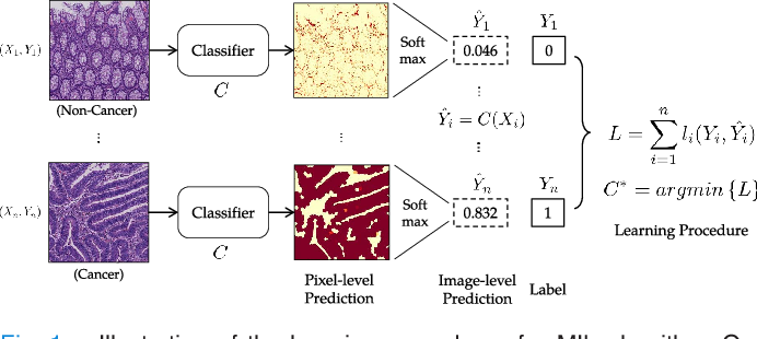 Figure 1 for Constrained Deep Weak Supervision for Histopathology Image Segmentation
