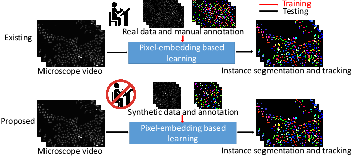 Figure 1 for Towards Annotation-free Instance Segmentation and Tracking with Adversarial Simulations