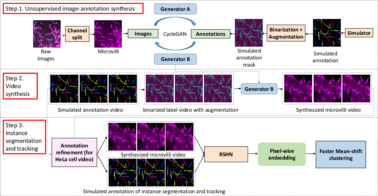 Figure 3 for Towards Annotation-free Instance Segmentation and Tracking with Adversarial Simulations