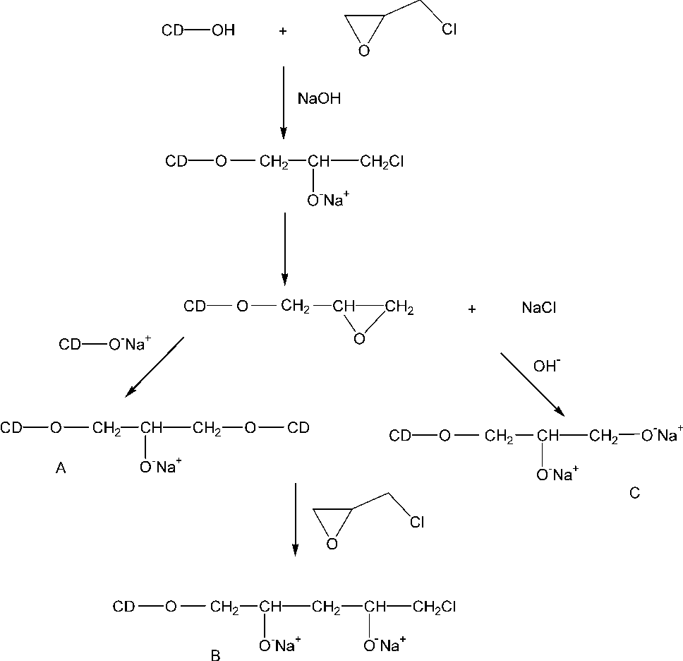 Fig. 1. Proposed mechanism for the reaction of EPI with cyclodextrin (A) crosslinking step, (B) crosslinked agent polymerization, (C) hydrolysis of the monografted EPI leading to a glycerol monoether.