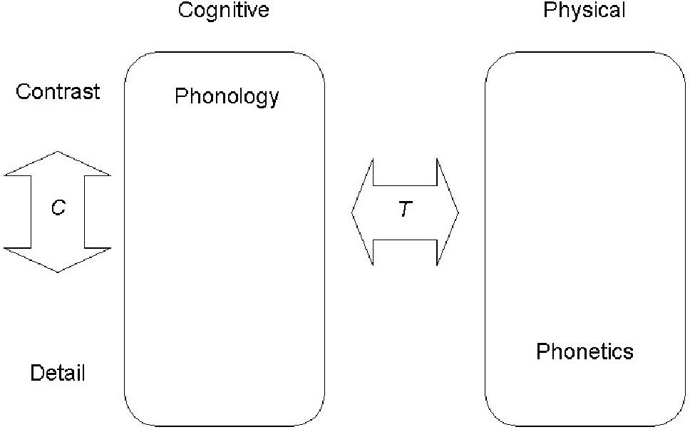 PDF] The phonetics phonology overlap - Semantic Scholar