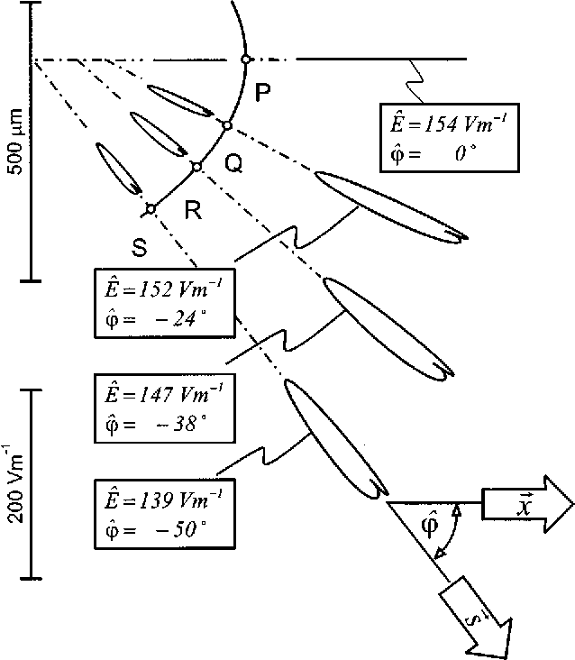 Model Study Of Vector Loop Morphology During Electrical Mapping Of