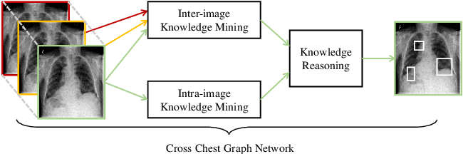 Figure 1 for Cross Chest Graph for Disease Diagnosis with Structural Relational Reasoning