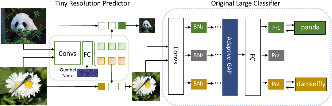 Figure 3 for Dynamic Resolution Network