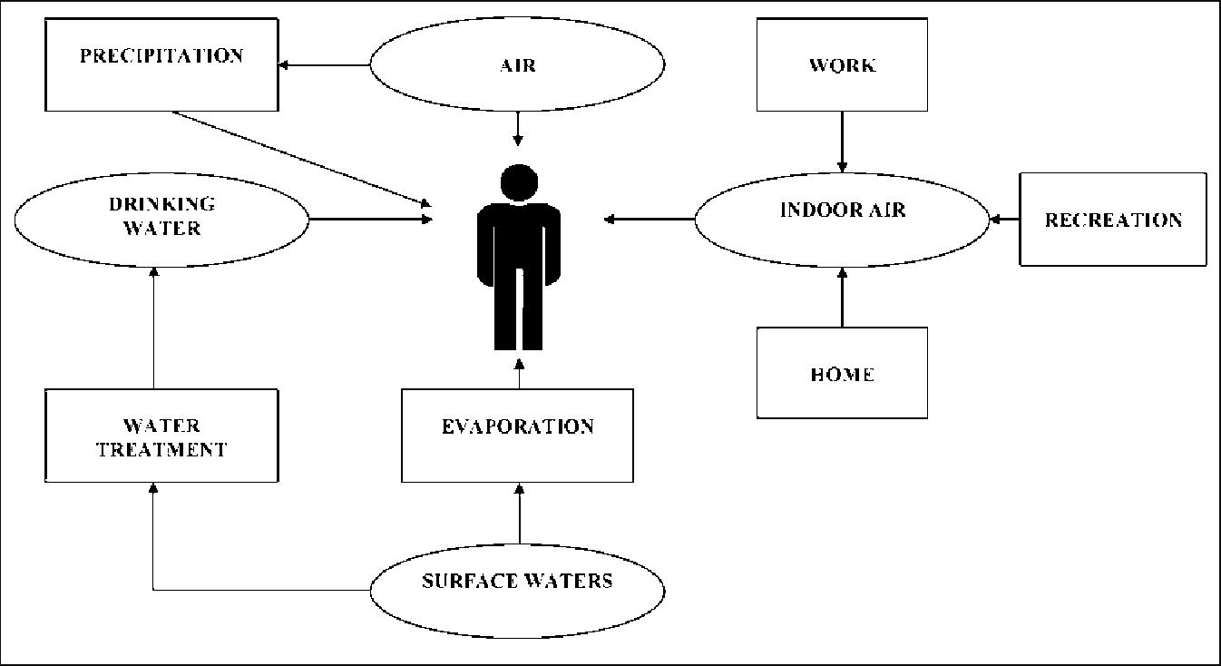 PDF] Analytical procedures used in examining human urine samples