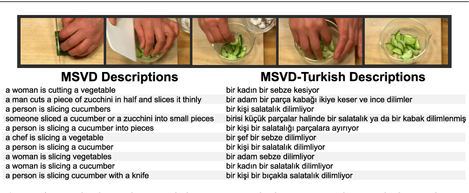 Figure 3 for MSVD-Turkish: A Comprehensive Multimodal Dataset for Integrated Vision and Language Research in Turkish