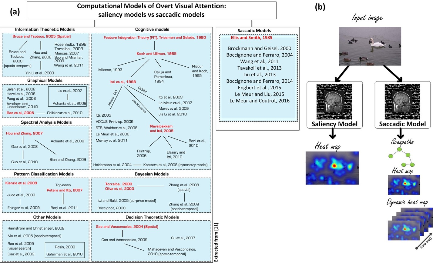 Figure 1 for Computational Model for Predicting Visual Fixations from Childhood to Adulthood