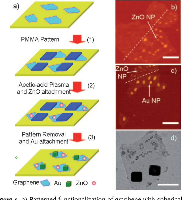 Figure 4. a) Patterned functionalization of graphene with spherical ZnO and cubic Au NPs (see the Supporting Information for the experimental details). b) AFM image of a modified graphene sheet with small spherical ZnO NPs region-specifically deposited on the plasma-treated area. c) AFM and d) TEM images of a graphene sheet modified with small spherical ZnO NPs deposited in the plasmatreated area and large cubic Au NPs attached in the ZnO/plasma-free region on the same graphene surface. Scale bars: b) 1 mm; c) 2 mm; d) 100 nm.