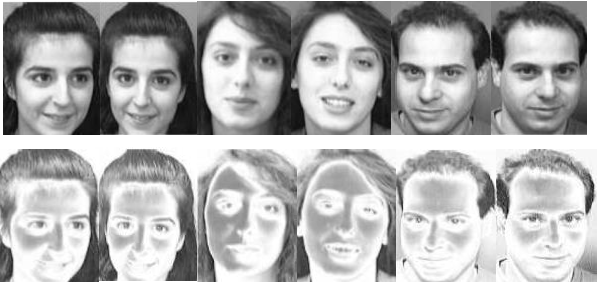 Figure 2 for ComplexFace: a Multi-Representation Approach for Image Classification with Small Dataset