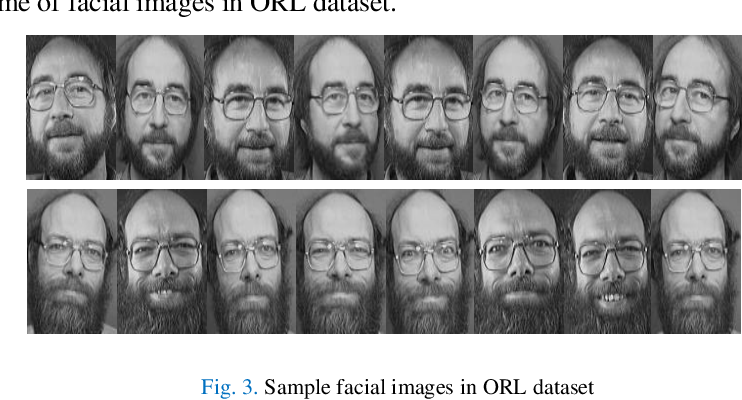 Figure 3 for ComplexFace: a Multi-Representation Approach for Image Classification with Small Dataset