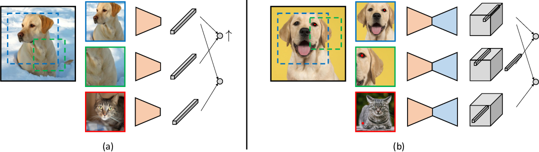 Figure 1 for Unsupervised Learning of Dense Visual Representations