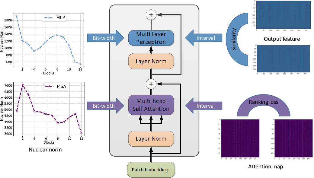 Figure 1 for Post-Training Quantization for Vision Transformer