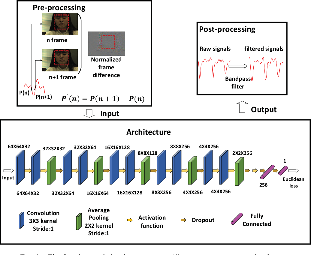 Figure 1 for Analysis of CNN-based remote-PPG to understand limitations and sensitivities