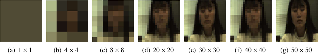 Figure 2 for Analysis of CNN-based remote-PPG to understand limitations and sensitivities