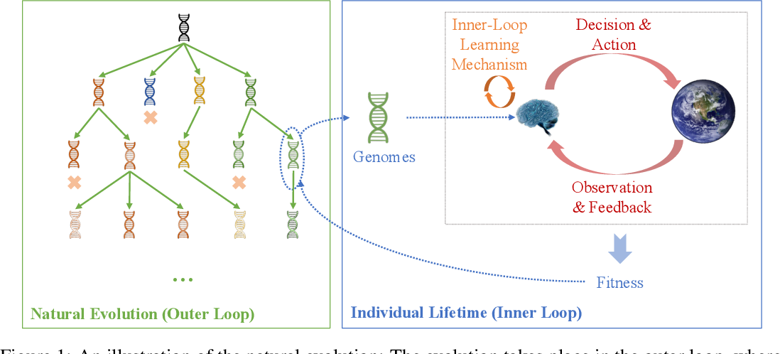 Figure 1 for Do What Nature Did To Us: Evolving Plastic Recurrent Neural Networks For Task Generalization