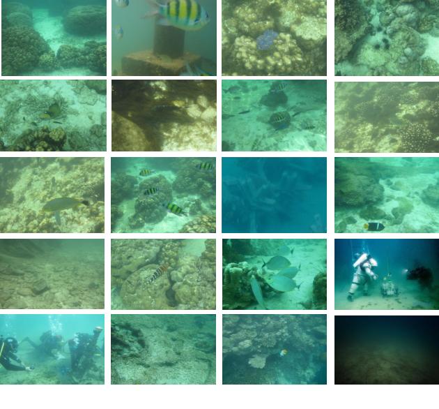 Figure 2 for Deep Underwater Image Enhancement