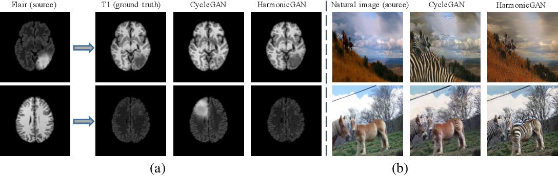 Figure 1 for Harmonic Unpaired Image-to-image Translation