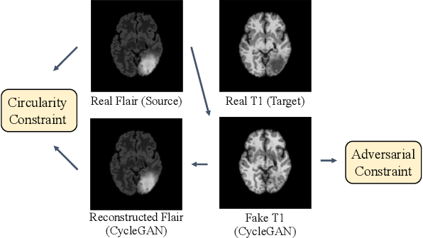 Figure 3 for Harmonic Unpaired Image-to-image Translation