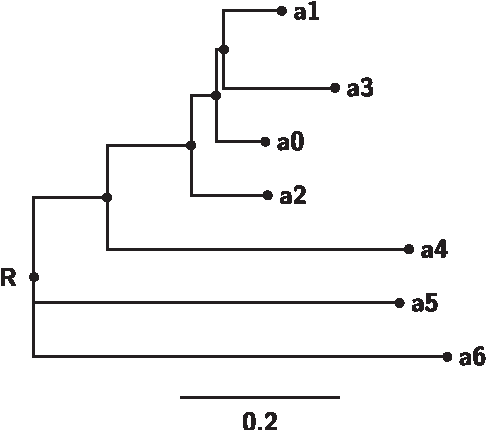 Drawing phylogenetic trees in latex and microsoft word semantic figure 1 ccuart Image collections