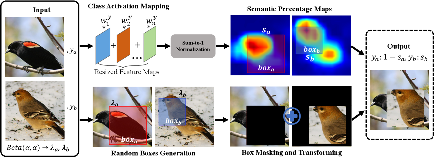 Figure 3 for SnapMix: Semantically Proportional Mixing for Augmenting Fine-grained Data