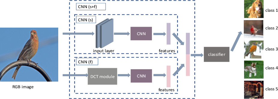 Figure 1 for Few-Shot Learning by Integrating Spatial and Frequency Representation