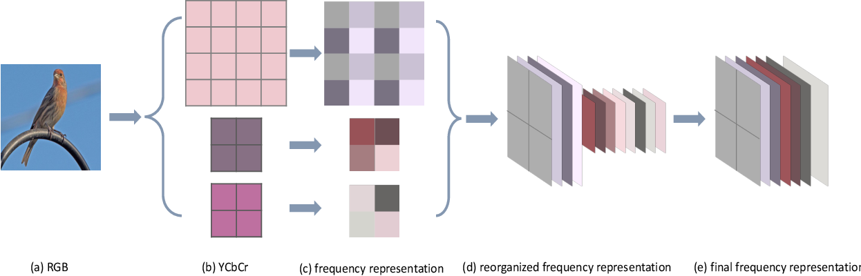 Figure 2 for Few-Shot Learning by Integrating Spatial and Frequency Representation
