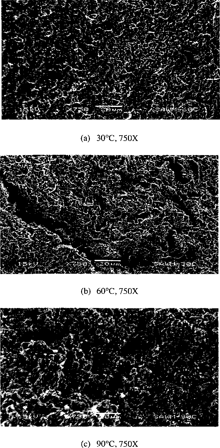 Figure 4.55 SEM Micrographs of Specimens Tested in Acidic Solution