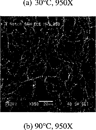 Figure 4.56 SEM Micrographs of Notched Specimens Tested in Neutral Solution