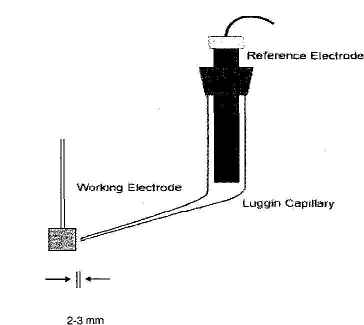 Figure 3.10 Luggin Probe Arrangement