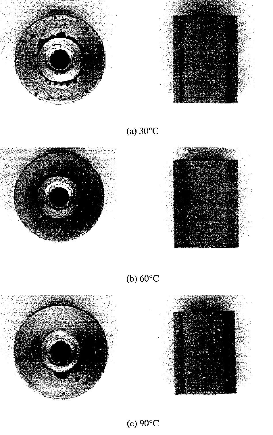 Figure 4.39 Appearances of Polarized Specimens in Acidic Solution