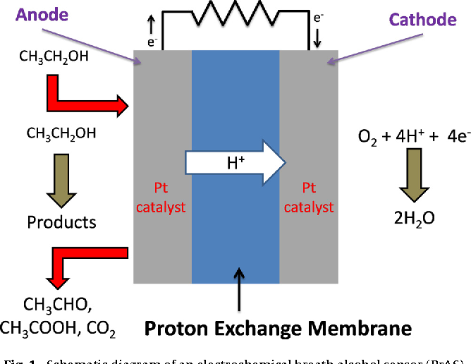 The application of power-generating fuel cell electrode materials