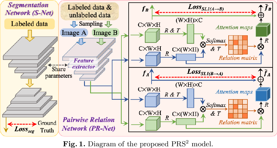 Figure 1 for Pairwise Relation Learning for Semi-supervised Gland Segmentation