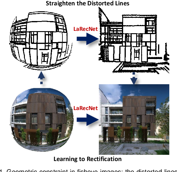 Figure 1 for Fisheye Distortion Rectification from Deep Straight Lines