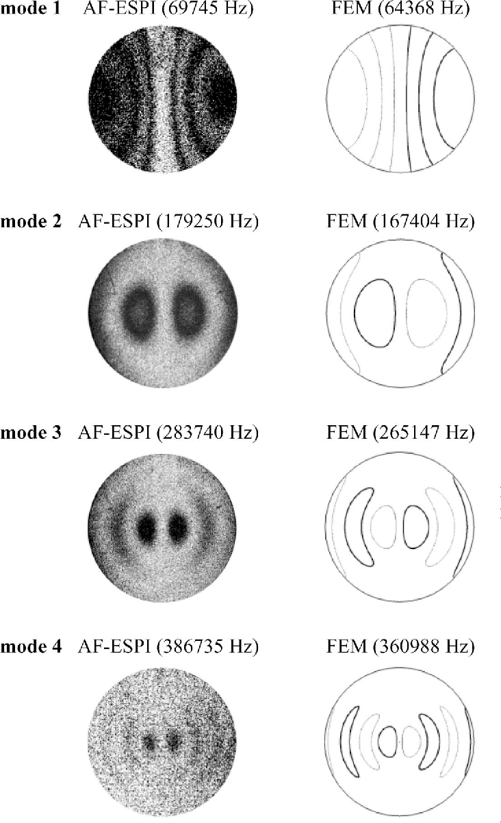 Fig. 5. Mode shapes of the extensional vibration obtained by AFESPI and FEM for the piezoceramic disk.
