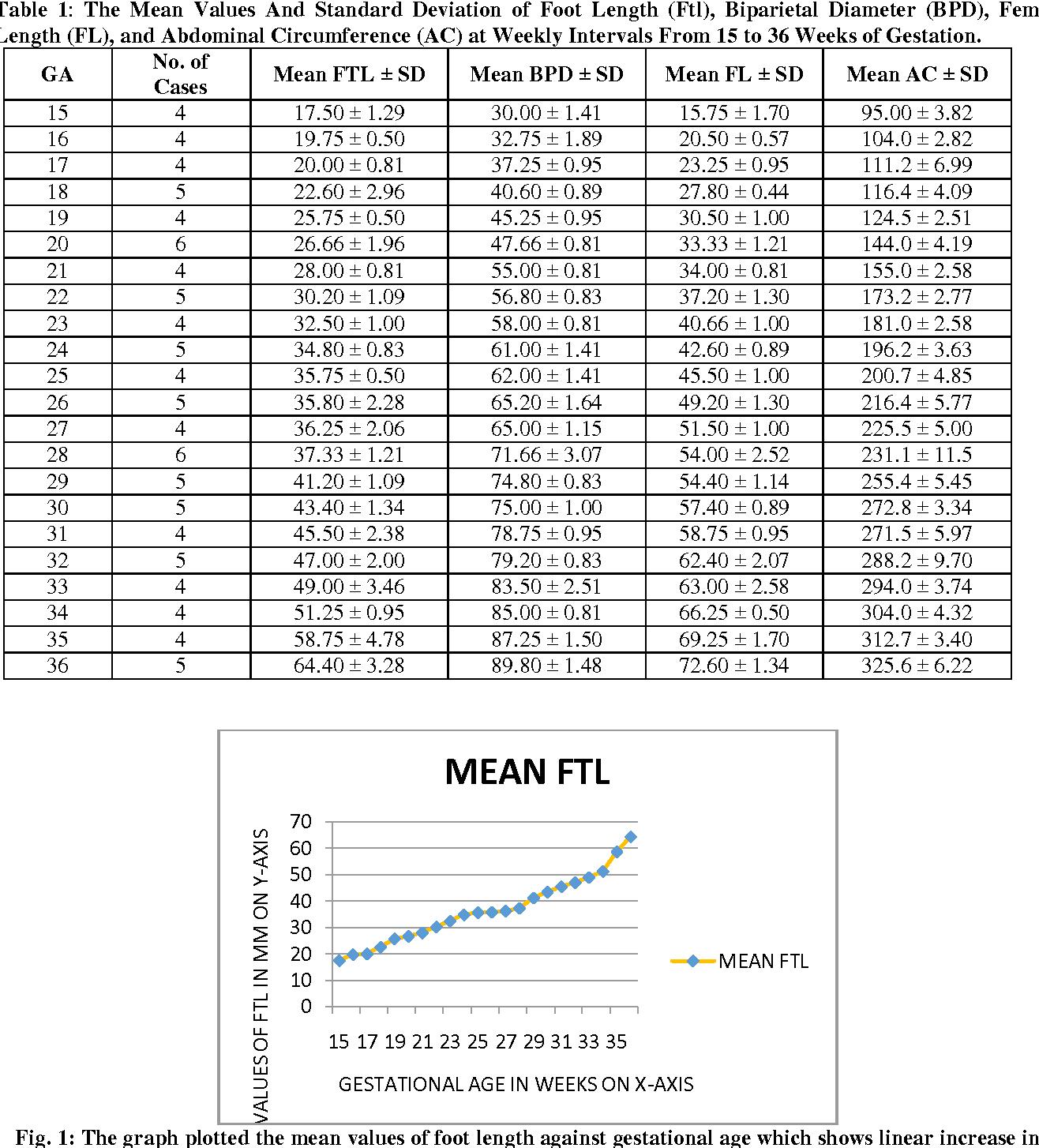 Fetal foot length for assessment of gestational age a comprehensive table 1 geenschuldenfo Images